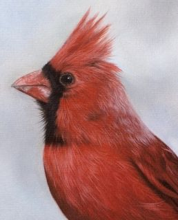 CARDINAL Original RACHEL STRIBBLING Oil Painting