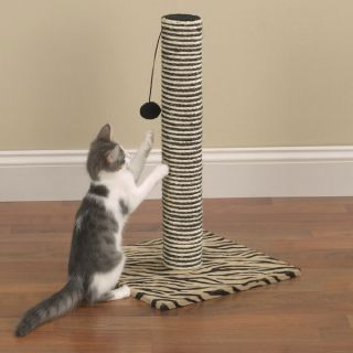 wild side cat scratching post pet supplies are stocked in our clean