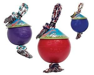 Romp N Roll 8 Ball Floats Jolly Pets Water Dog Toy
