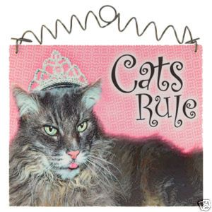 Cats Rule Sign Cat Kitty Kitties Shabby Cottage Chic
