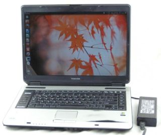 A105 S4254 Core Duo 1.6GHz 1GB RAM 120GB HDD Laptop CD RW/DVD