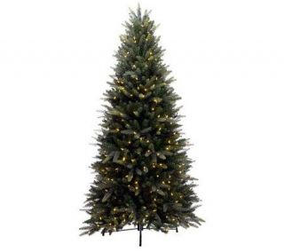 Bethlehem Lights 9 Balsam Fir with LED Lights & Instant Power