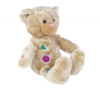 Lil Notes Interactive 15 Plush Teddy Bear w/ Song Book —