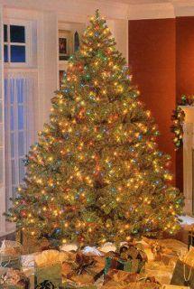 Roman Bethlehem Pre Lit Douglas Fir Christmas Tree —