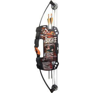 Banshee Junior Archery Set New Compound Bows Archery Fishing Hunting