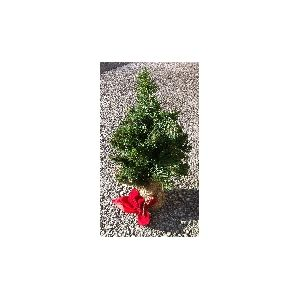 Christmas Mini Christmas Tree 9 inches Tall with Woven Bag Base Mini