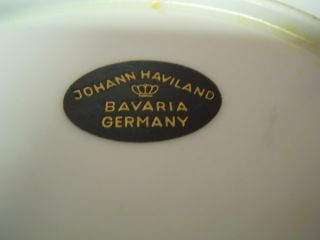 Johann Haviland Bavaria Germany China large platter Dawn Rose