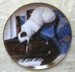 Touch of Ivory by Daphne Baxter Plate Franklin Mint Blue Eyes Kitten