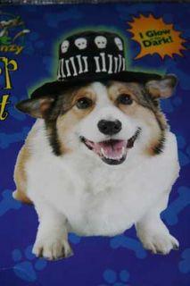 Glow in The Dark Skull Bones Dr John Dog Costume s Halloween Top Hat