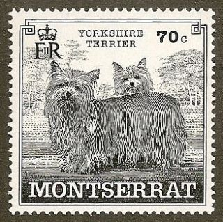 Dog Pen Ink Line Art Postage Stamp YORKSHIRE TERRIER Montserrat Europe
