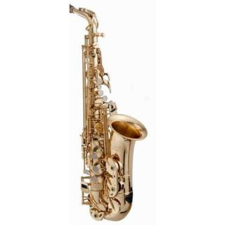 ALS502 Elite Series Eb Alto Saxophone w/ Case and Accessories $1730