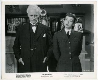 Movie Still~David Niven/Evelyn Keyes~Enchantment (1948) m43231