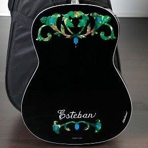esteban ltd ed duende classical steel guitar package