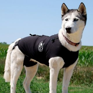177 254 the original anxiety wrap for dogs medium size rating 20 $ 39
