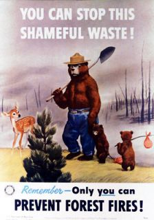 Smokey Bear Shameful Waste Old 34 24 Giclee Art Canvas