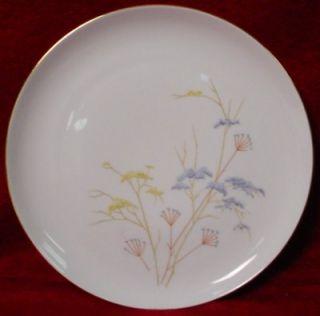 Eschenbach China P1345 Pattern Salad Plate