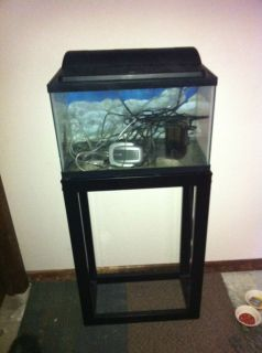 92 gallon corner bowfront fish tank w stand canopy reef for Fish tank stand 10 gallon