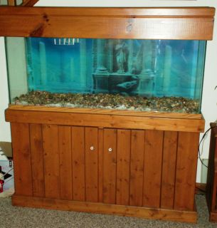 Custom oak plywood stand and 125 gallon aquarium set up for Wood fish tank stand