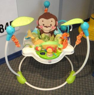 Fisher Price Precious Planet Monkey Baby Jumperoo Activity Gym