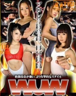 2012 Female Women Wrestling DVD 2 Matches Pro Ring 60 Minutes Japanese