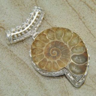 Latest Fashion Jewelry Ammonite Fossil Gemstone Pendant Silver 136ct 2