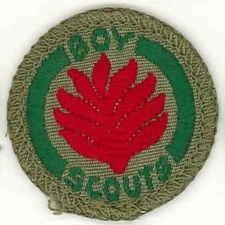 Kingdom British Scouts Boy Scout Firefighter Proficiency Badge