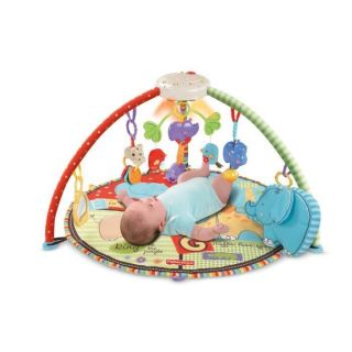 NEW Fisher Price Deluxe Musical Mobile Baby Gym Playmant Activity Play