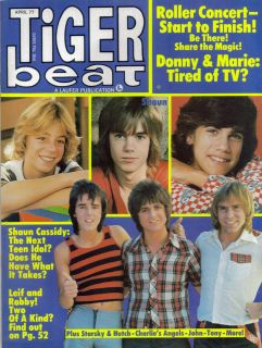 TIGER BEAT MAGAZINE APRIL 1977 LEIF GARRETT CHARLIES ANGELS BAY CITY