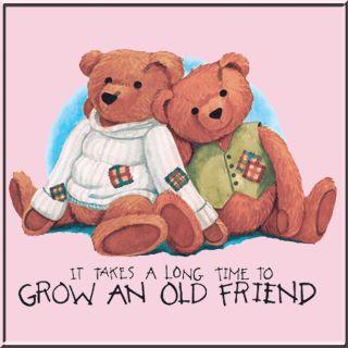 Time to Grow An Old Friend Teddy Bear Long Sleeve T Shirt s M L XL 2X