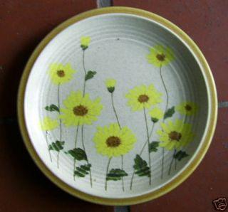 Set of 2 Mikasa Natures Song Fresh Meadows Salad Plate