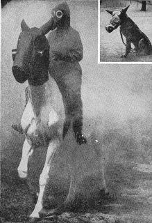 WW1 BRITISH GAS MASK SBR & SATCHEL 1917 TOMMY GAS MASK BAG CANISTER