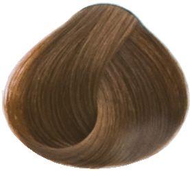 Goldwell Topchic Professional Hair Color (2.1 oz. tube)  6GB