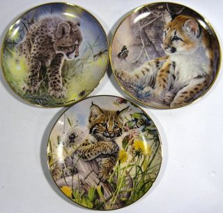 Federation Collector plates Franklin Mint by Glen Loates Wild Cats 1