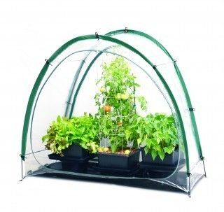 Culti Cave Mini Greenhouse Gardening Kit Portable Indoor Equipment for