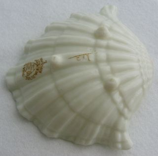 Antique George  Royal China Works Worcester Porcelain Shell