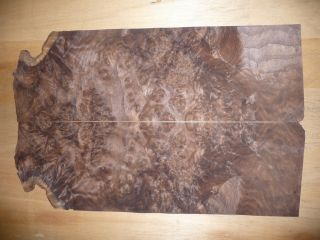 "Walnut Burl Wood Veneer 5""X17"""