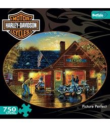 CAMEO COLLECTION HARLEY DAVIDSON JIGSAW PUZZLE PICTURE PERFECT