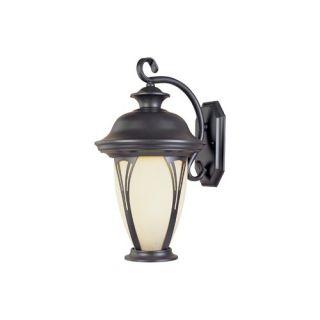 Outdoor Wall Lantern in Vintage Rust   Energy Star   8251 61 PL