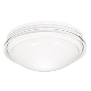 Hunter Fans Low Profile Marine II Two Light Outdoor Ceiling Fan Light