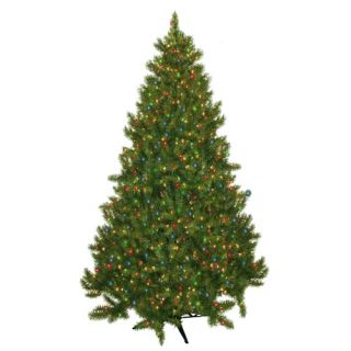 Evergreen Fir Prelit Christmas Tree with 700 Multicolored Lights