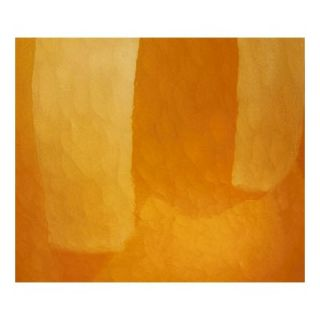 Philips Forecast Lighting Madison Wall Sconce Shade in Amber Cirrus