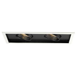 WAC Line Voltage Multi Spot 2 Light Trim and Optional Housing   MT