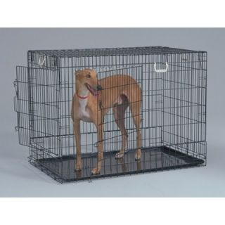 General Cage Two Door Black Wire Dog Crate