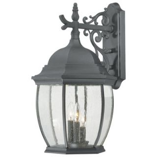 Thomas Lighting Covington Three Light Outdoor Down Wall Lantern in