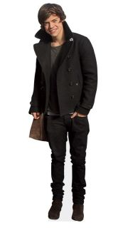 Harry Styles Mini Size Cardboard Cutout Real Stand Up Merchandise
