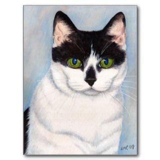Black and White Cat Portrait Postcard