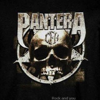 Pantera Cowboys from Hell CFH Skull Metal Rock T Shirt L XL 2XL 3XL