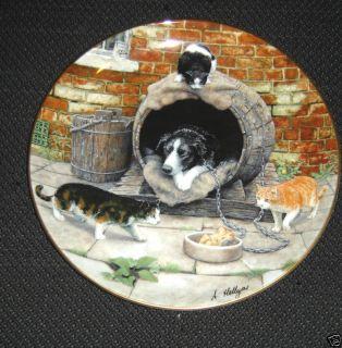 Cute Border Collie Let Sleeping Dogs Lie Plate Herriot
