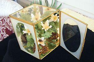 Vintage Terrarium Brass Glass Mirror Green house Fairy Garden Home