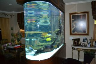 660 Gallon Bullet Shaped Fish Tank All Equipment included, must sell